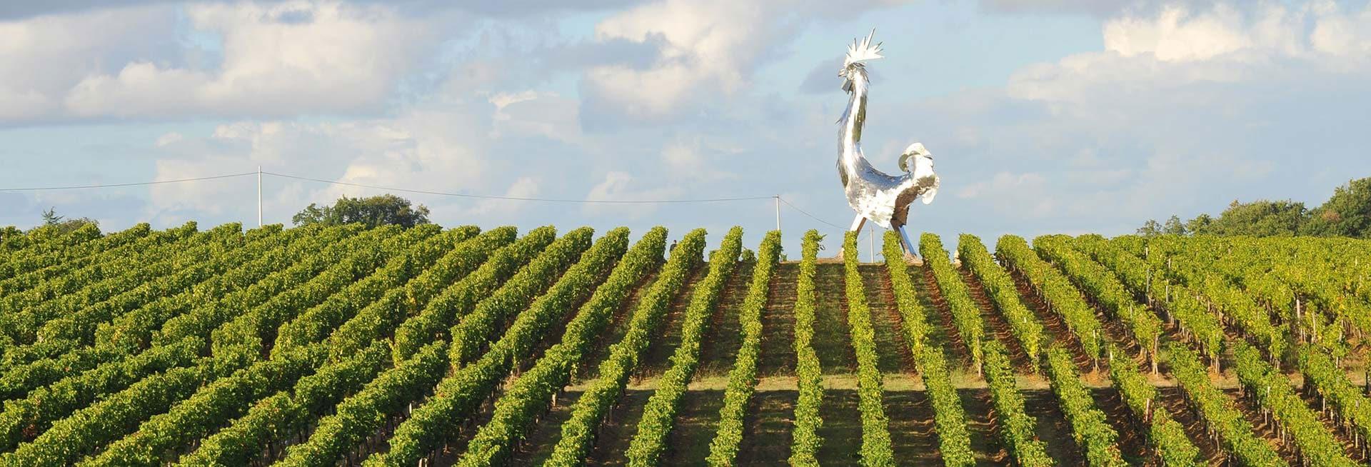 Vignoble du Chateau La France