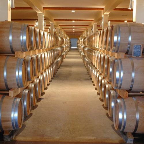 Meilleures conditions pour conserver un vin